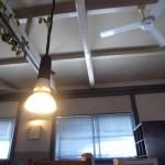 2013.05.26 那須 SHOZO CAFE 6