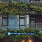avex green bldg 青山通り